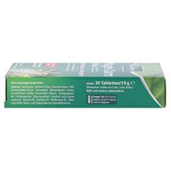 KNEIPP Magen-Darm Kräuter Tabletten 30 Stück - Rechte Seite