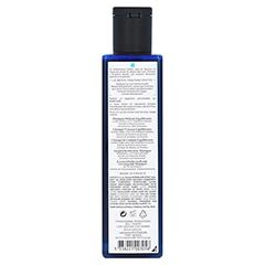 PHYTOPANAMA Ausgleichendes Shampoo Fettiges Haar 250 Milliliter - Rückseite