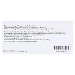 RETICULOENDOTHELIALES System GL D 8 Ampullen 10x1 Milliliter N1 - Rückseite
