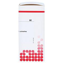 LACHNANTHES tinctoria C 4 Tabletten 80 Stück N1 - Rechte Seite