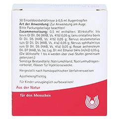IRIS LENS cristallina comp.Augentropfen 30x0.5 Milliliter N1 - Rückseite
