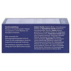 CENTROVISION Retina Kapseln 180 Stück - Unterseite