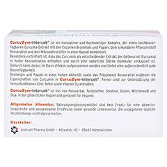 CURCUZYM-Intercell Kapseln 100 Stück - Unterseite