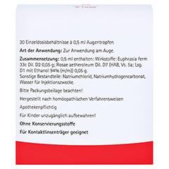 Euphrasia Augentropfen 30x0.5 Milliliter N1 - Rückseite