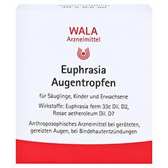 Euphrasia Augentropfen 30x0.5 Milliliter N1 - Vorderseite