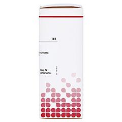 GRINDELIA ROBUSTA Urtinktur D 1 50 Milliliter N1 - Rechte Seite