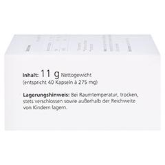 medpex Uridin Forte Kapseln 40 Stück - Rechte Seite