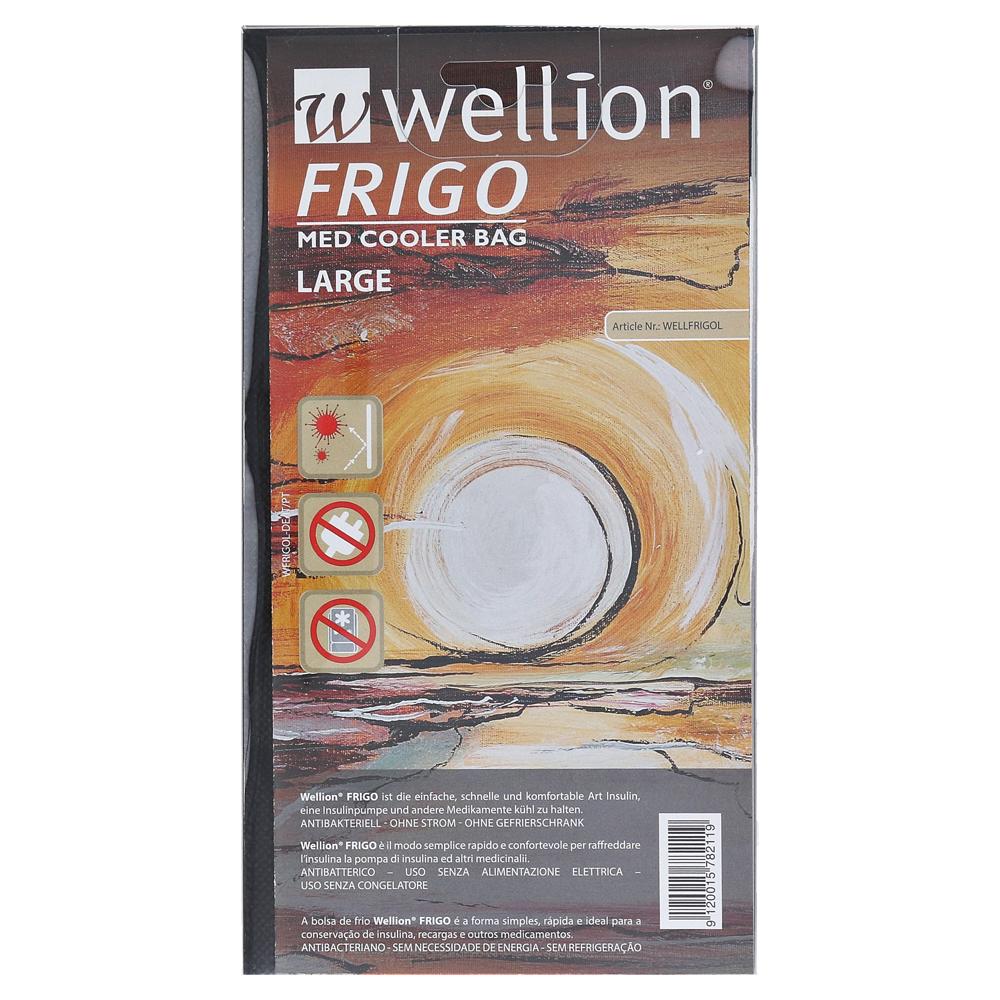 wellion-frigo-l-med-cooler-bag-1-stuck
