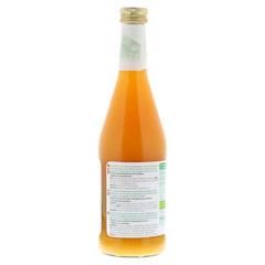 BIOTTA Wellness Früchte-Gemüse-Direkts.m.Molke 500 Milliliter - Rechte Seite