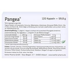 PANGEA Kapseln 120 Stück - Rückseite