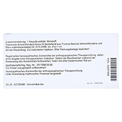 FASCICULUS atrioventricularis GL D 15 Ampullen 10x1 Milliliter N1 - Rückseite
