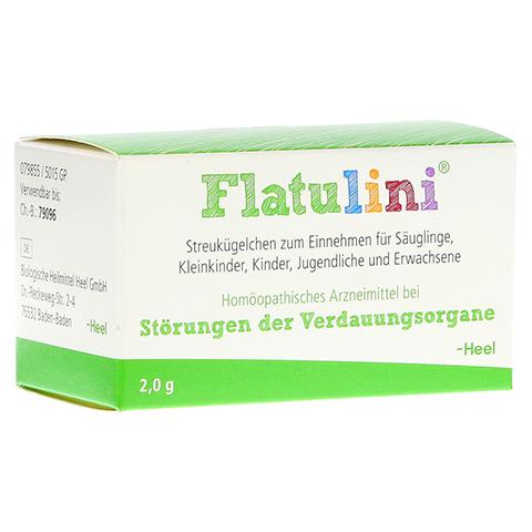 FLATULINI Globuli 2 Gramm N1