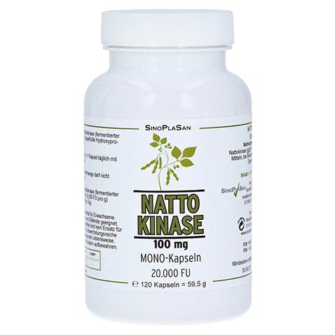 Nattokinase 100 mg Mono 20.000 FU Kapsel 120 Stück
