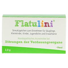 FLATULINI Globuli 2 Gramm N1 - Vorderseite