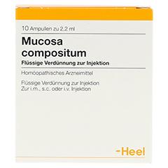 MUCOSA compositum Ampullen 10 Stück - Vorderseite