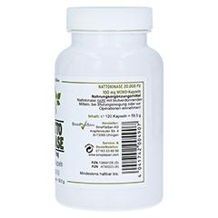 Nattokinase 100 mg Mono 20.000 FU Kapsel 120 Stück - Linke Seite
