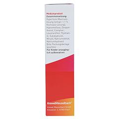 ASPECTON Nasenspray entspricht 1,1% Kochsalz-Lsg. 20 Milliliter - Rechte Seite