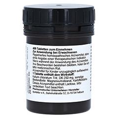 SCHÜSSLER Nr.4 Kalium chloratum D 6 Tabletten 400 Stück - Rückseite