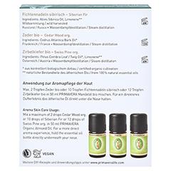 SET Duftende Waldkraft ätherisches Öl 1 Packung - Rückseite