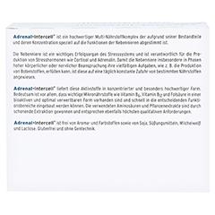 Adrenal-intercell Kapseln 120 Stück - Rückseite