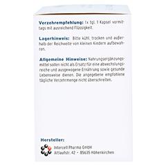 Adrenal-intercell Kapseln 120 Stück - Rechte Seite