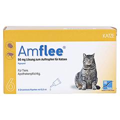 AMFLEE 50 mg Spot-on Lösung z.Auftropfen f.Katzen 6 Stück - Vorderseite