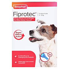 FIPROTEC 67 mg Lösung z.Auftr.f.kleine Hunde 3x0.67 Milliliter - Vorderseite