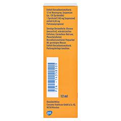 Otri-Allergie Nasenspray Fluticason 12 Milliliter N3 - Linke Seite