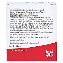 CHELIDONIUM COMP.Augentropfen 30x0.5 Milliliter N1 - Rückseite