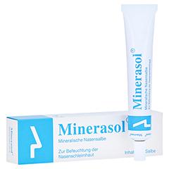 Minerasol Mineralische Nasensalbe 20 Gramm