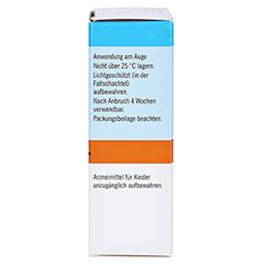 Oculotect fluid 50mg/ml PVD 3x10 Milliliter N3 - Rechte Seite
