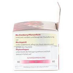 LAVERA regenerierende Nachtpflege Cranberry Creme 50 Milliliter - Linke Seite