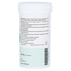 BIOCHEMIE Pflüger 9 Natrium phosphoricum D 6 Tabl. 400 Stück N3 - Linke Seite