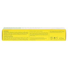 CATTIER Zahncreme mit Heilerde Zitrone 75 Milliliter - Unterseite