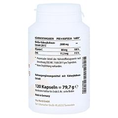 PHASEOLIN Kidneybohnen 500 mg Kapseln 120 Stück - Linke Seite