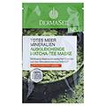 DERMASEL Maske Matcha Tee ausgleichend 12 Milliliter