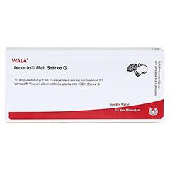 ISCUCIN mali Stärke G Ampullen 10x1 Milliliter N1 - Vorderseite