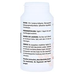 CRANBERRY PLUS C 400 mg Kapseln 180 Stück - Rechte Seite