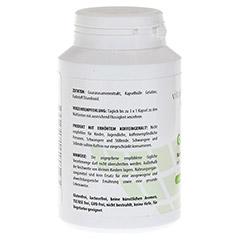 GUARANA PUR 500 mg Kapseln 120 Stück - Rechte Seite