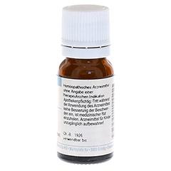 CAUSTICUM HAHNEMANNI D 6 Globuli 10 Gramm N1 - Rückseite