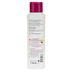 LAVERA Haar Volumen & Kraft Shampoo 250 Milliliter - Rückseite