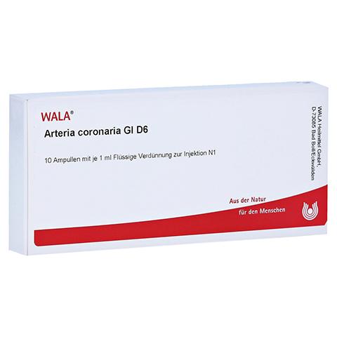 ARTERIA CORONARIA GL D 6 Ampullen 10x1 Milliliter N1