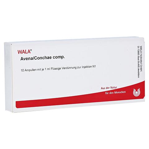 AVENA/CONCHAE comp.Ampullen 10x1 Milliliter N1
