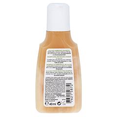 RAUSCH Avocado Farbschutz Shampoo 40 Milliliter - Rückseite