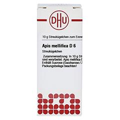 APIS MELLIFICA D 6 Globuli 10 Gramm N1 - Vorderseite