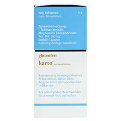 BIOCHEMIE DHU 7 Magnesium phosphoricum D 6 Tab.Ka. 200 Stück N2 - Linke Seite
