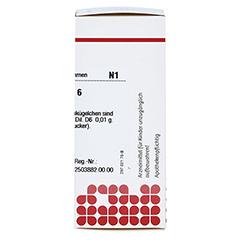 RHUS TOXICODENDRON D 6 Globuli 10 Gramm N1 - Rechte Seite