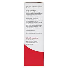 Echinacea Mund- und Rachenspray 50 Milliliter N1 - Rechte Seite