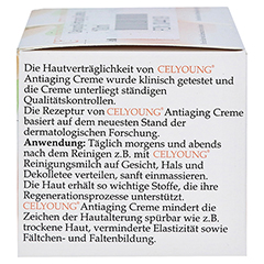 CELYOUNG Antiaging Creme 100 Milliliter - Rechte Seite