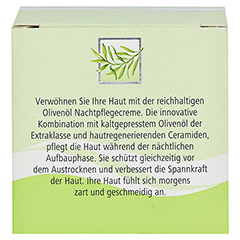 medipharma Olivenöl Nachtpflege Creme 50 Milliliter - Rückseite